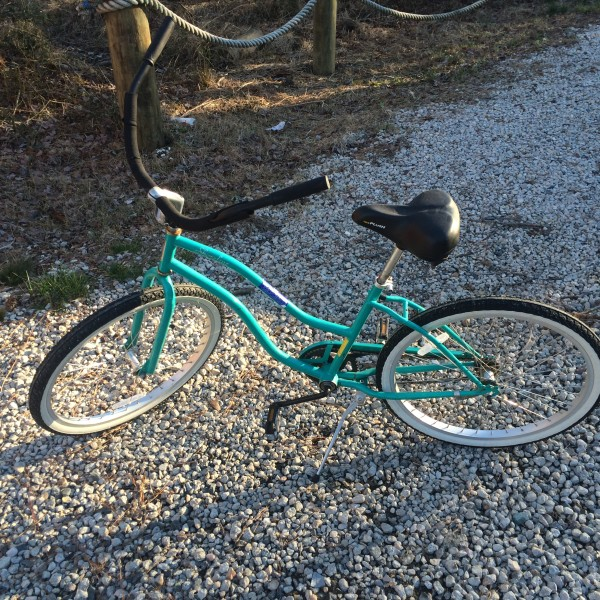 Used green beach cruiser